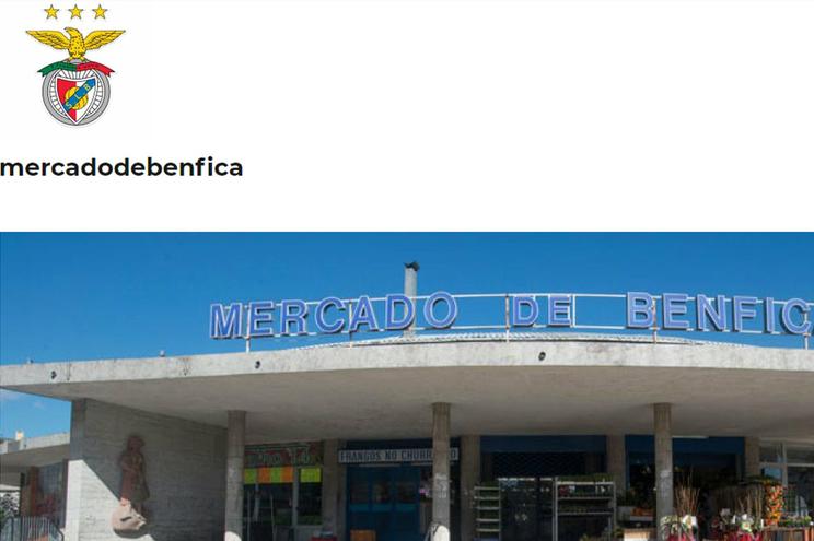 """Blogue """"Mercado de Benfica"""" foi deitado abaixo"""