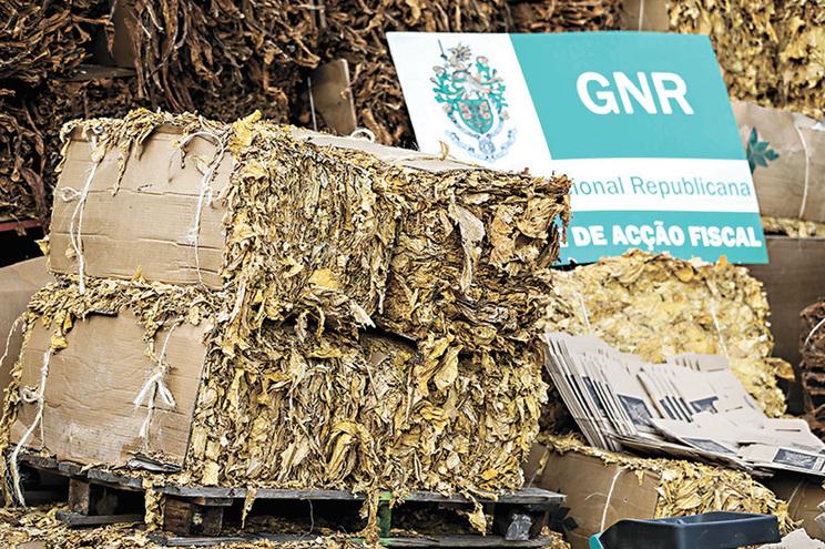 GNR apreendeu, na Maia, 500 quilos de folha de tabaco