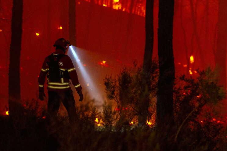 Fogo no concelho de Castro Marim, em Faro, foi o que consumiu mais área ardida este ano