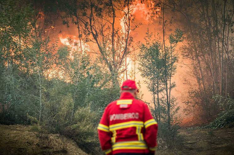 O incêndio atingiu mato e uma zona de eucaliptal