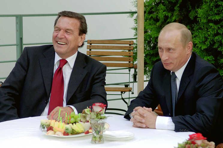 """""""Schröder é o fantoche de Putin, que protege os assassinos"""", defende Navalny"""