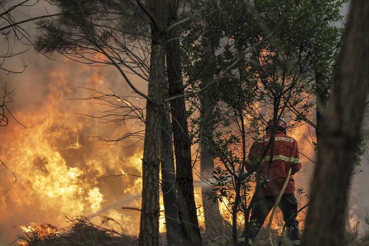 Centenas de bombeiros combatem este domingo o incêndio em Oleiros, Proença-a-Nova e Sertã