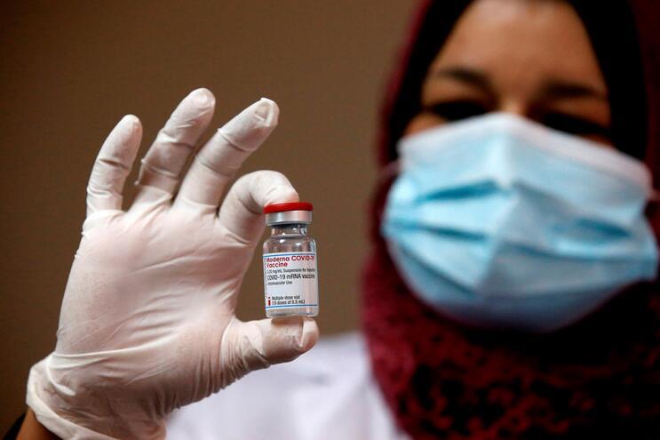 Primeiras doses da vacina da Moderna chegaram a Portugal em janeiro