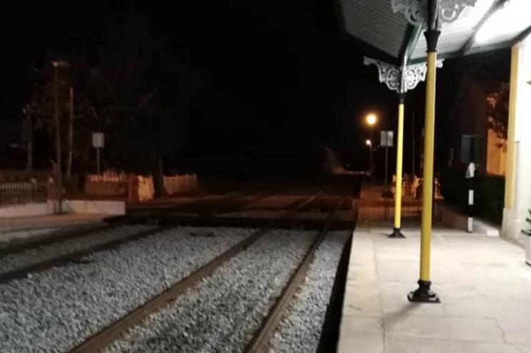 Grupo de passageiros foi a pé até à estação de Vila Nova de Baronia, depois de andar quatro quilómetros