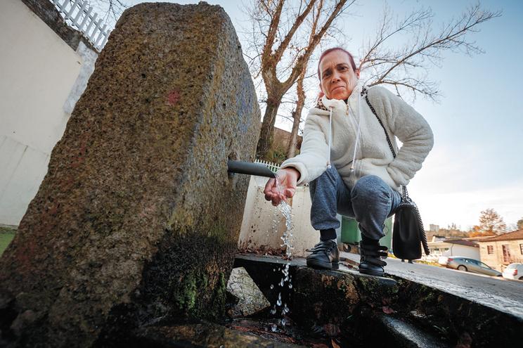 Há 79 concelhos, como Macedo  de Cavaleiros, em que mais de 50%  é desperdiçada