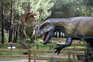 Investigador de Coimbra conclui que erupções vulcânicas contribuíram para o fim dos dinossauros