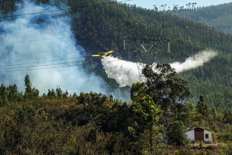 """O fogo consumiu """"largas centenas de hectares"""""""