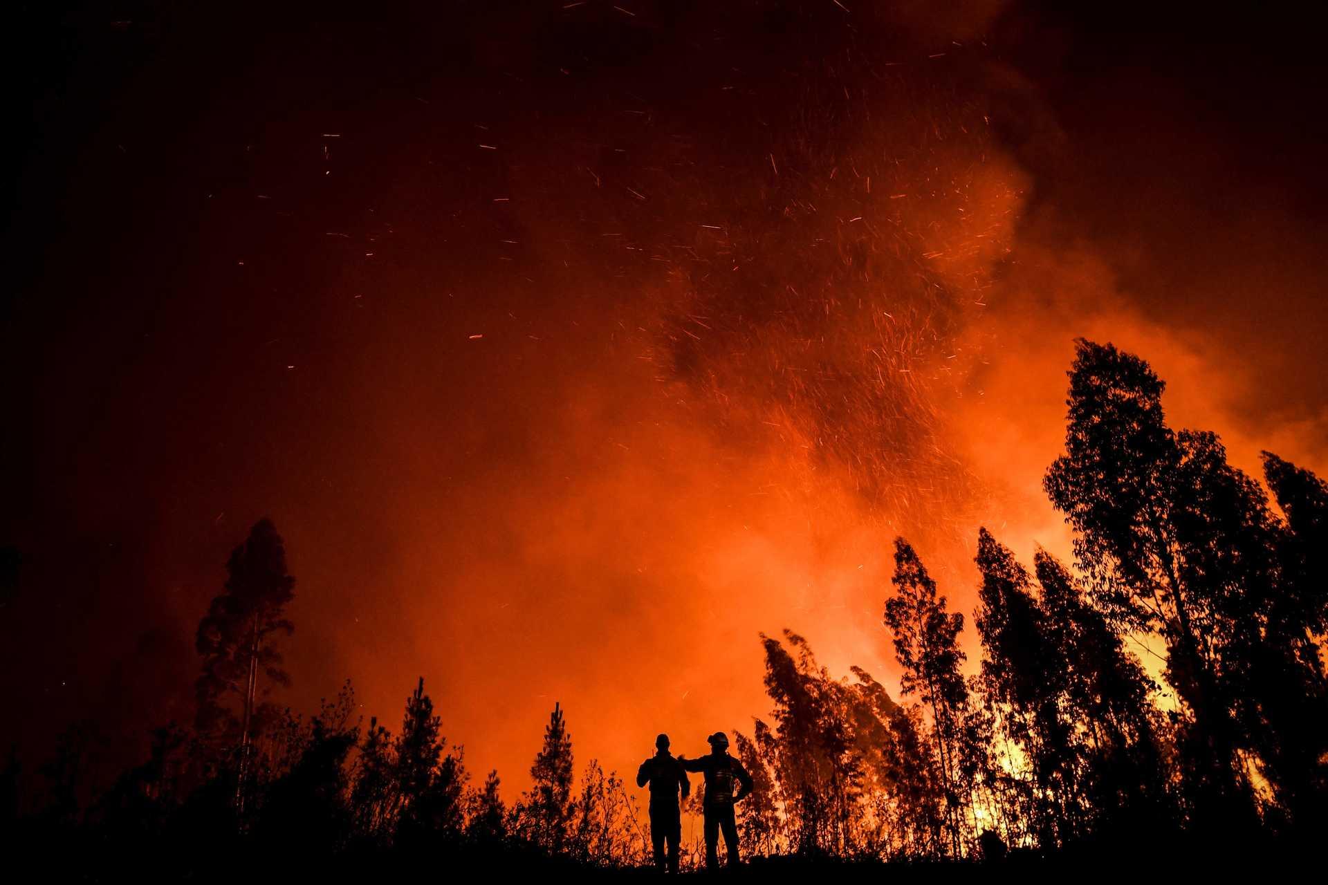 Projeções sombrias: aquecimento global acelera com consequências dramáticas