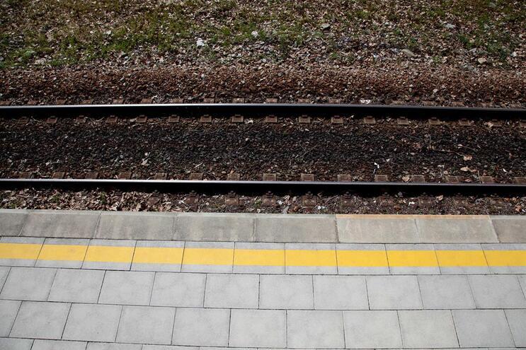 Circulação ferroviária normalizada na Linha da Beira Alta