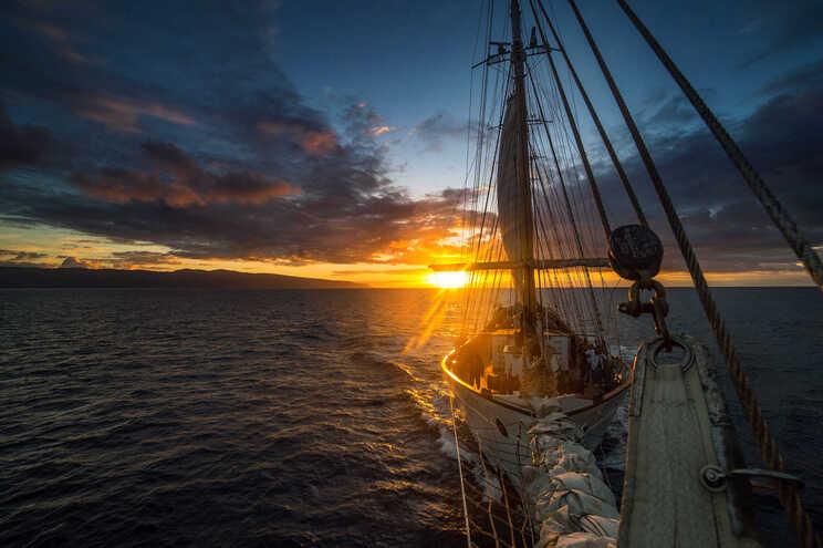 Há uma Serra da Estrela e peixes que vivem 100 anos no mar dos Açores