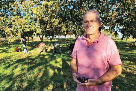 Teotónio Monteiro tem soutos em zonas mais quentes e não teve prejuízo