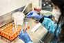 Laboratório da Immunethep, em Cantanhede, está a desenvolver vacina contra a covid-19
