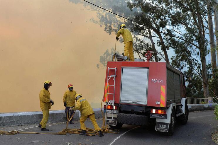 Madeira a arder. Bombeiros combatem fogos por toda a ilha