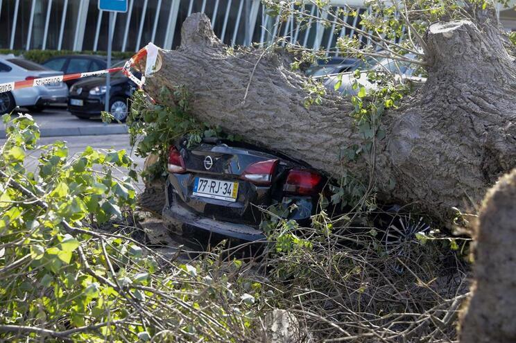 Figueira da Foz foi também uma das localidades mais afetadas
