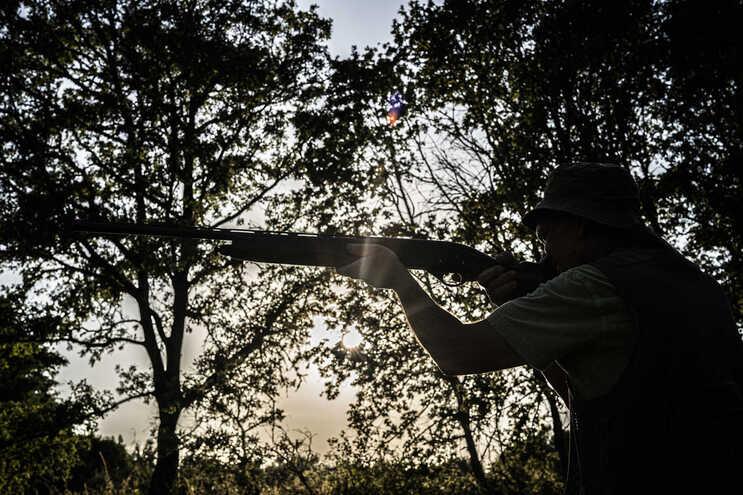 Parlamento Europeu aprovou proibição do uso de chumbo nas munições de caça