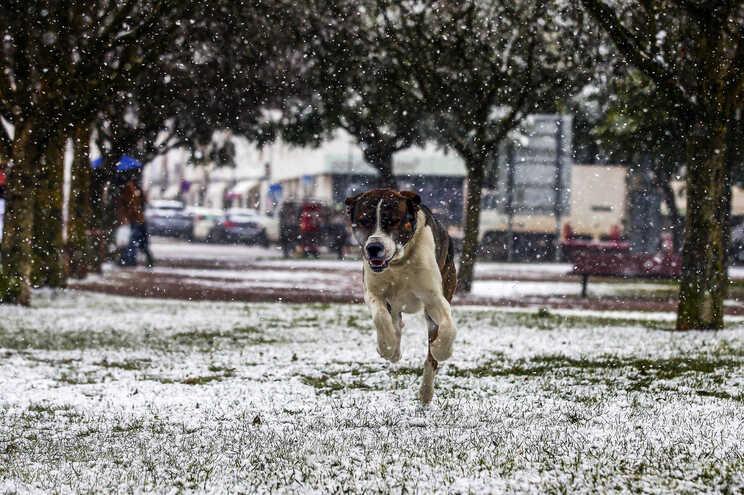 Janeiro foi o quarto mês mais frio dos últimos 20 anos