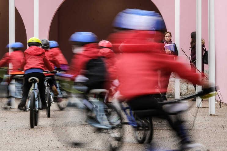 Federação Portuguesa de Ciclismo alerta que é preciso garantir a manutenção das bicicletas