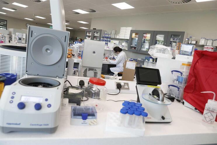 Vários países estão a desenvolver esforços para conseguir uma vacina contra a Covid-19