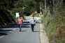 As autoridades já identificaram mais de 100 alojamentos para trabalhadores agrícolas no concelho de Odemira