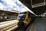 """CP """"vai precisar de 200 a 250"""" comboios nos próximos 20 anos"""