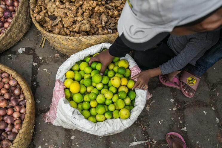 O limão é um dos alimentos apontados como cura para a infeção de Covid-19
