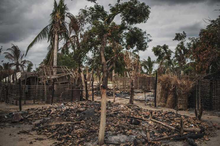 Mais de 50 pessoas terão sido decapitadas em Cabo Delgado pelo grupo radical islâmico