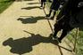 Corpo Nacional de Escutas suspendeu todas as atividades nacionais