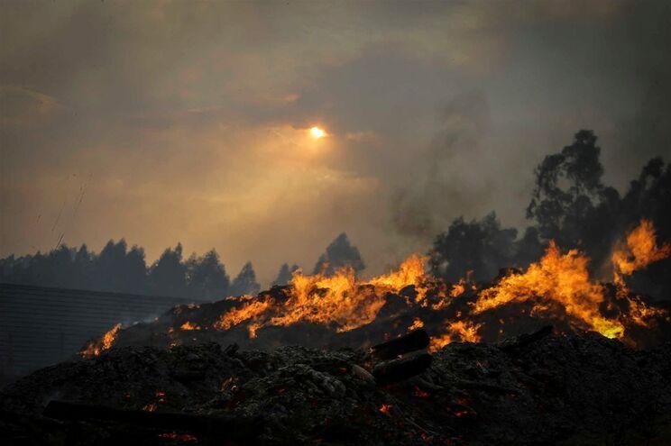Queimadas entre as principais causas dos fogos até 31 de agosto