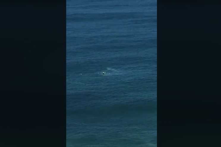 Um morto e três feridos em queda de helicóptero no mar da Barra da Tijuca
