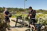 Brindar a chegada da primavera nos passadiços reabertos junto ao Douro