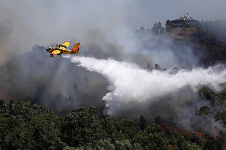 Observatório JN: A prevenção dos Grandes Incêndios Florestais é uma questão de escala
