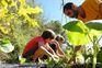 Família faz de aldeia do Soajo um doce e sustentável lar