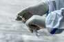 Portugal contabiliza mais de 400 mil infetados