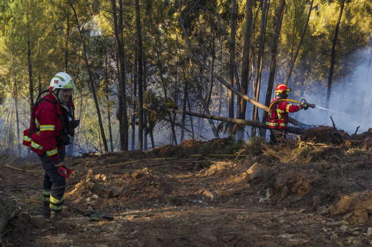 O incêndio tem duas frentes ativas e está a consumir mato e povoamento florestal misto