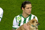 Jogadores entram em campo com cães para adotar ao colo
