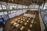Na Secundária Camões, em Lisboa, os exames de Matemática vão ser feitos no pavilhão