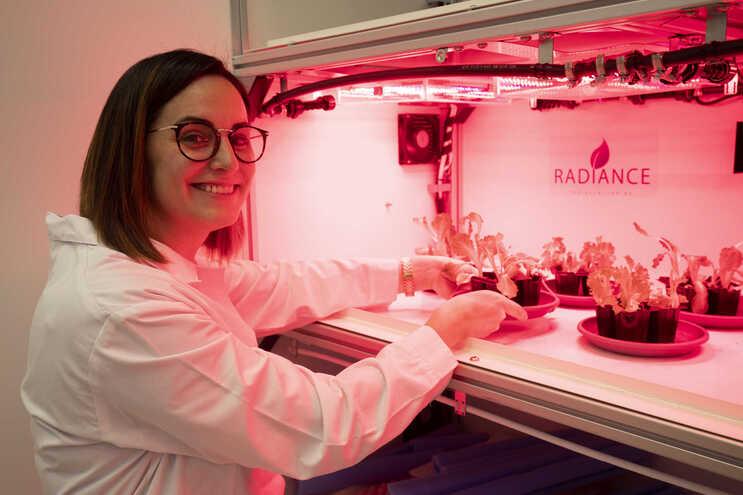 Ana Luísa Machado, engenheira alimentar, trabalha no Laboratório Colaborativo Montanhas de Investigação