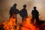 Incêndio atinge depósito da Cinemateca Brasileira