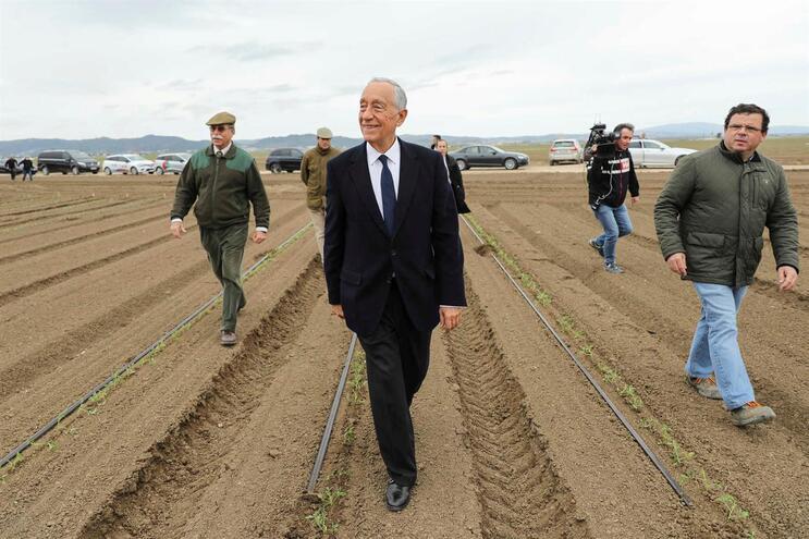 Marcelo visitou este sábado a sementeira de tomate na Lezíria Grande de Vila Franca de Xira