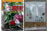 Pacotes com sementes enviados para vários países sem solicitação