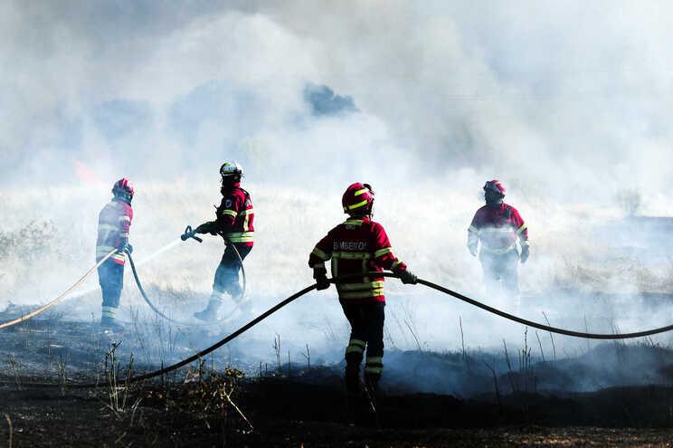 Dominado fogo que deflagrou em Tomar