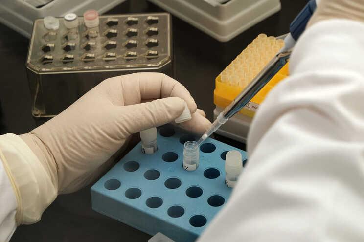 INSA participa em estudo-piloto da OMS para criar 1.º controlo para antigénio