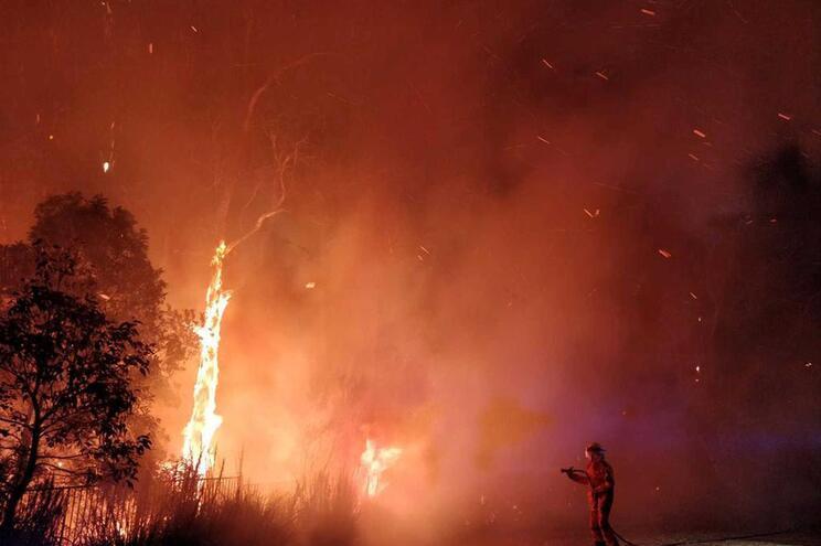 """Incêndios na Austrália estão """"claramente"""" ligados ao aquecimento global"""