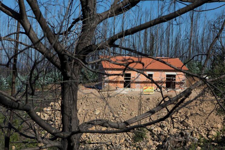 Fundo Revita vai reanalisar suspensão de apoios a casas no final do mês