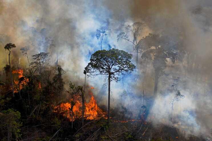 A situação meteorológica tem agravado ainda mais os incêndios florestais