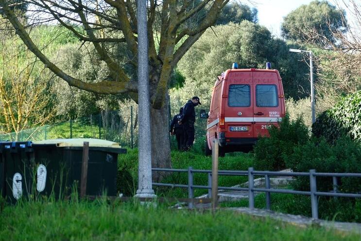Homicídio de idoso ocorreu ao final da tarde na Mata de Alvalade, em Lisboa