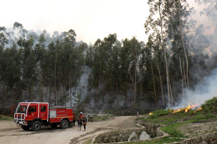 Governo quer reduzir risco de contágio durante combate aos incêndios florestais