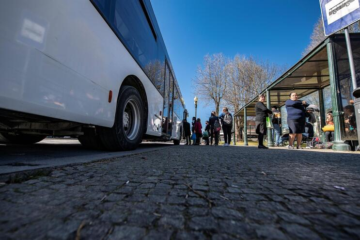 Concurso para transporte público na Área Metropolitana do Porto com 41 propostas