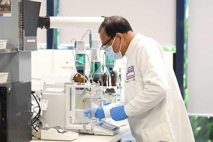 Estão em curso processos de negociação para aquisição de vacinas contra a covid-19 por Portugal