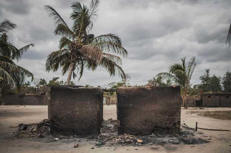 Jornalistas sobreviveram a 15 dias nas matas para fugir a ataques em Moçambique